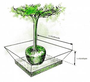 Plantput